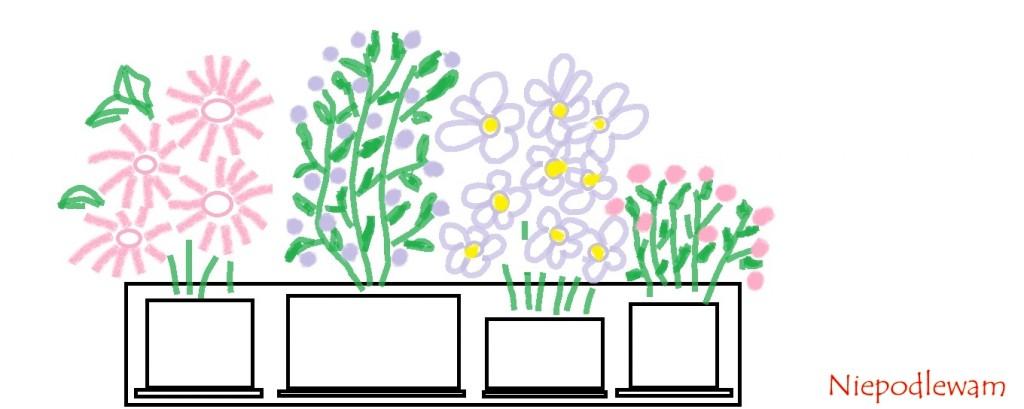 W drewnianej skrzynce doniczki z kwiatami ustawia się osobno, każdą na oddzielnej podstawce. Rys. Niepodlewam