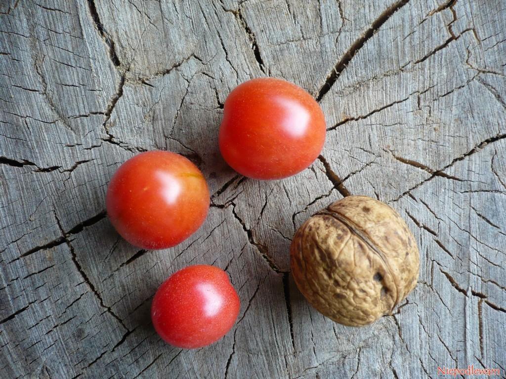 Malinowy Kapturek to pomidor typu koktajlowego, ale o smaku malinowego. Owoce są trochę mniejsze od orzechów włoskich. Fot. Niepodlewam