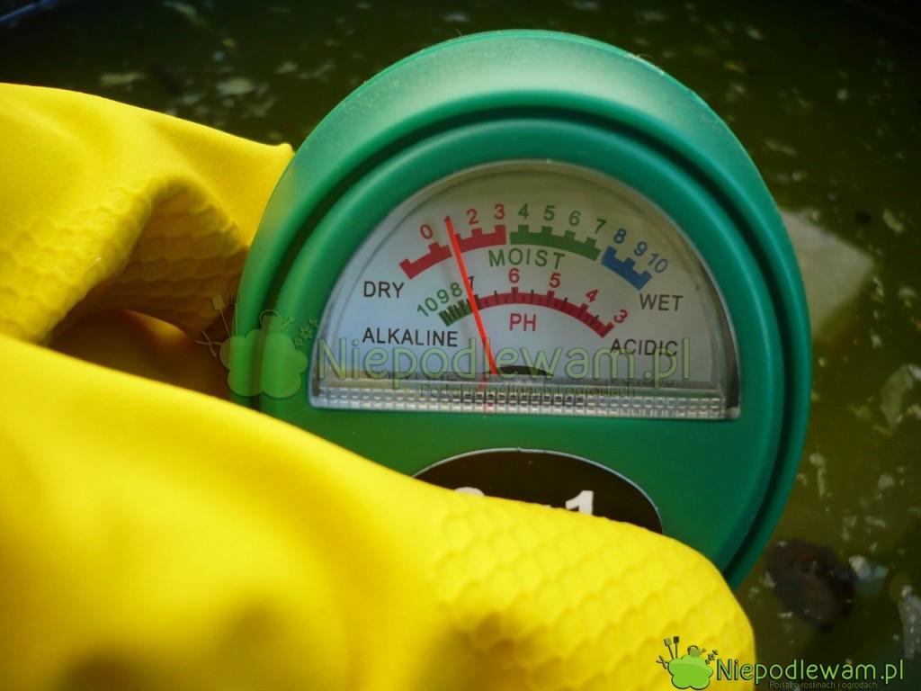 Odczyn pH ziemi dla warzyw można sprawdzić przy pomocy pehametru (dokupienia wsklepach ogrodniczych). Fot.Niepodlewam