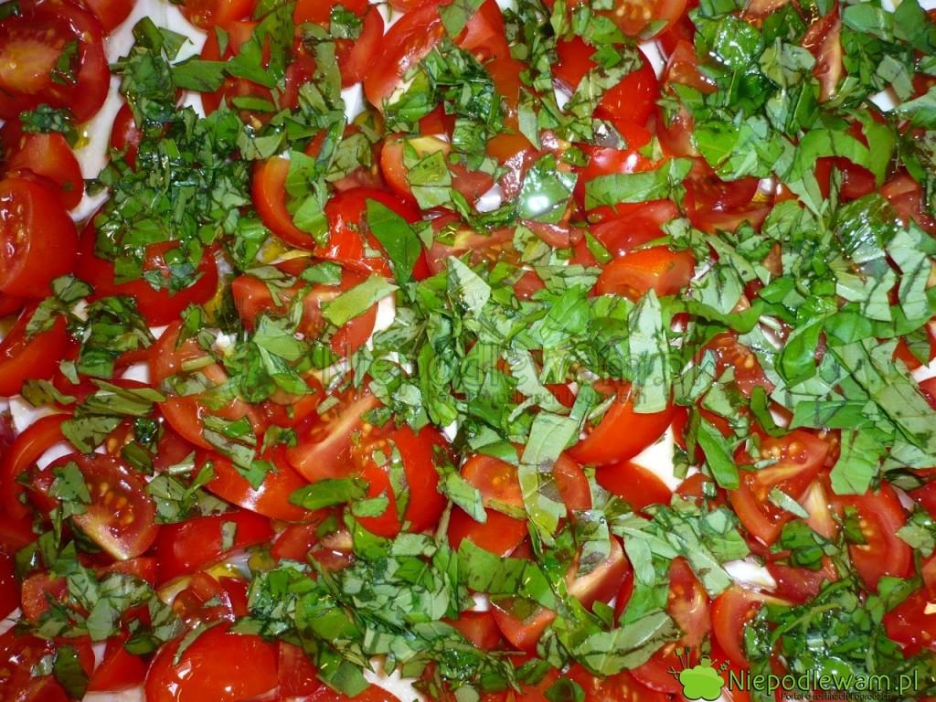 Danie zpomidorami ibazylią. Fot.Niepodlewam