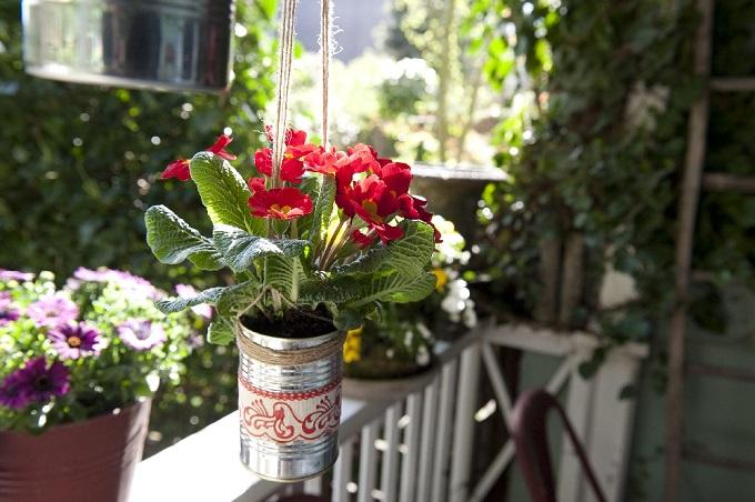 Wiszące doniczki to oszczędność miejsca na małym balkonie. Fot. Flower Council of Holland/thejoyofplants.co.uk