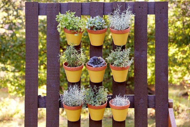 Ogród pionowy z palety. Pomalowano ją farbą Viva Garden! Fot. Viva Garden