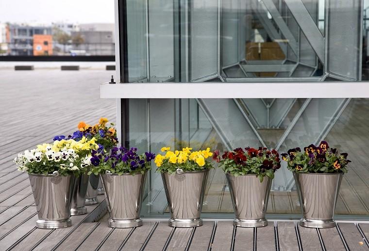 Bratki wmetalowych pojemnikach. Fot.Flower Council of Holland/thejoyofplants.co.uk
