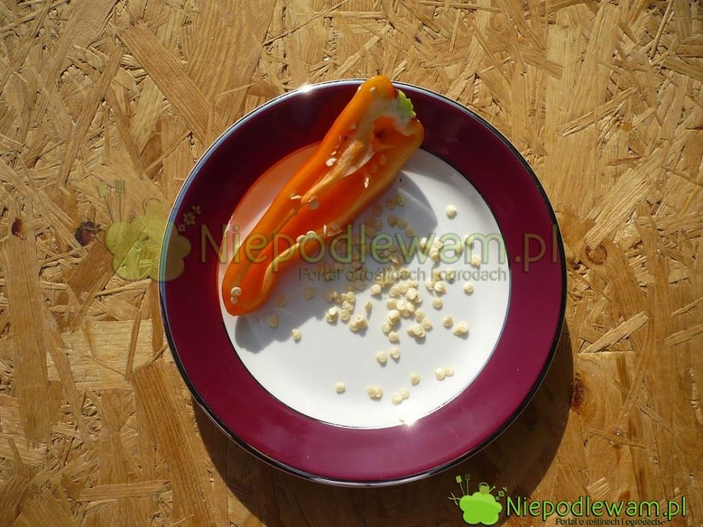 Nasiona papryki Hungarian Yellow Wax. Fot.Niepodlewam