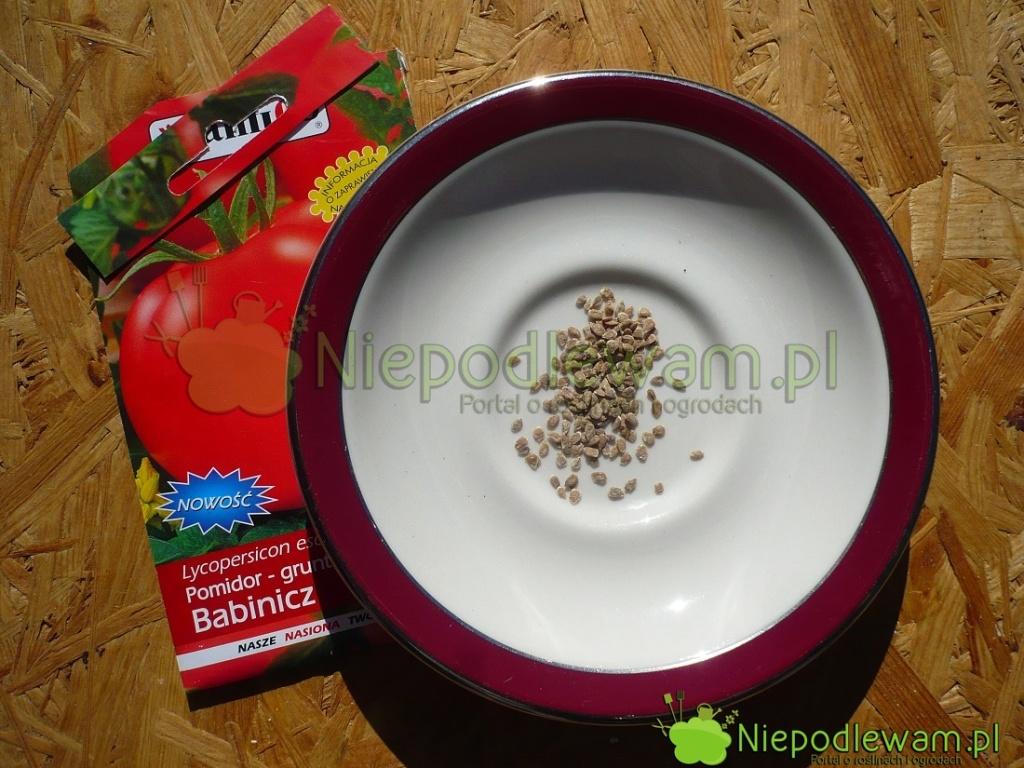 Nasiona pomidora Babinicz. Fot.Niepodlewam