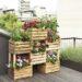 Balkonowy kwietnik ze skrzynek – pomysł z pelargoniami