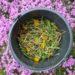 Mniszek lekarski z kwiatami – przepis na gnojówkę roślinną